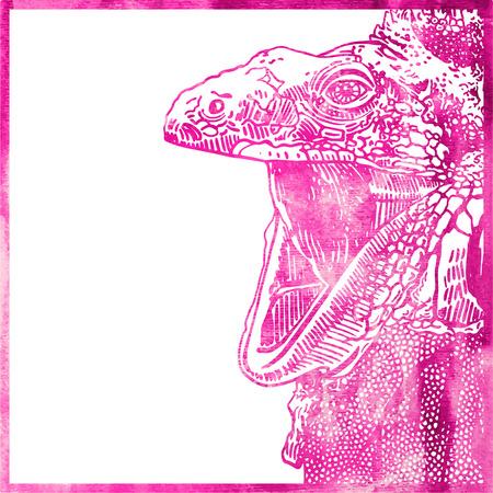 opened mouth: Resumen acuarela de animales de color rosa, cabeza de lagarto con la boca abierta, ilustraci�n vectorial Vectores