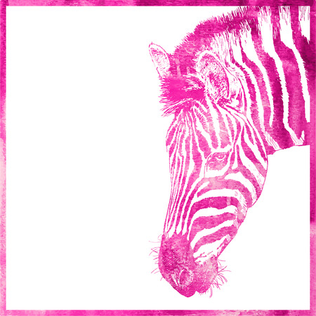 zebra heads: watercolor animal background in pink color, head of zebra, vector illustration