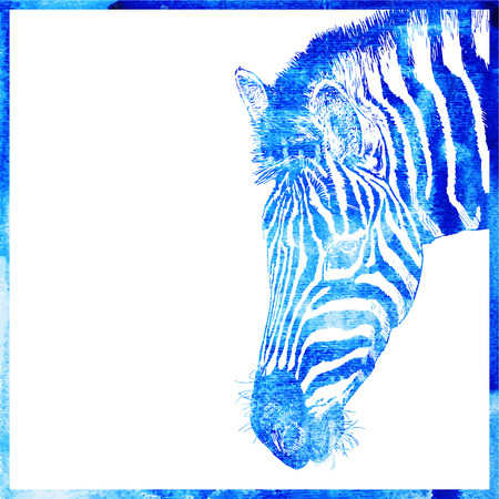 zebra heads: watercolor animal background in a blue color, head of zebra, vector illustration