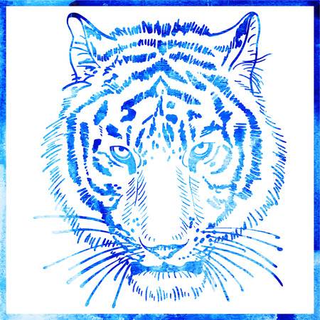 head of tiger is in a watercolor artwork in a blue color, portrait of animal, vector illustration