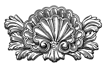 clam illustration: heraldry clam shell sketch calligraphic drawing isolated on white background, retro ornament pattern in antique baroque style, vector illustration
