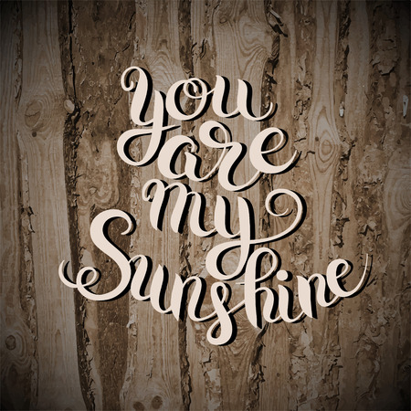 sunshine: you are my sunshine hand lettering inscription typography poster on wooden texture, romantic quote for valentines day card or save the date card, raster version illustratiom