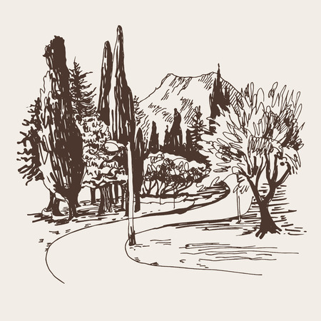 sketching of park alley view with trees cypress and mountain in Budva Riviera Montenegro (slovenska plaza hotel), travel vector illustration