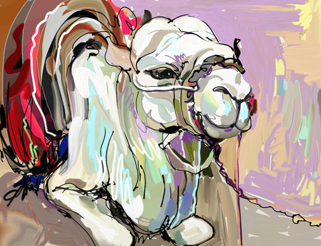 original digital painting artwork of white camel, vector illustration