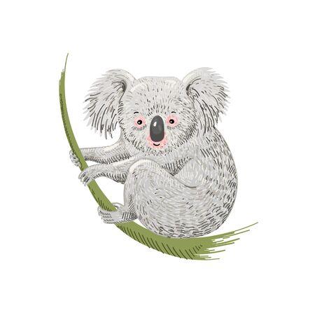 cute cartoon character koala bear sitting on eucalyptus branch Banque d'images - 133780877