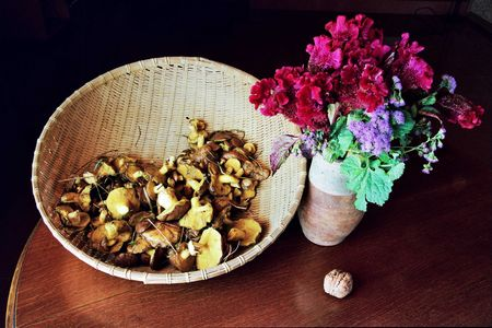 stillife: Stillife with mushrooms, flowers and a basket