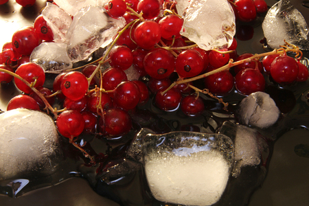 thawing: Red currant in glass bowl against black background with thawing cubes of ice and water
