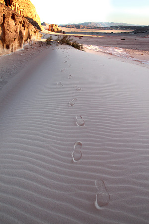 sinai desert: Footsteps on sand in Sinai desert