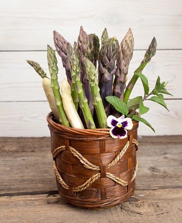 Set of raw white, green, purple asparagus in flowerpot with violet and mint. Organic healthy eating concept.