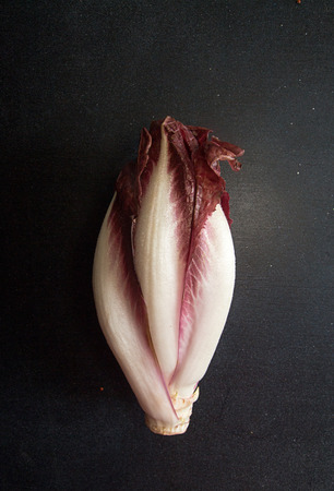 Chicory on black background. Half cut cabbage.
