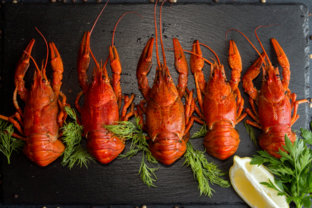 Row of boiled cooked crayfish crawfish ready to eat on black background. Overhead.