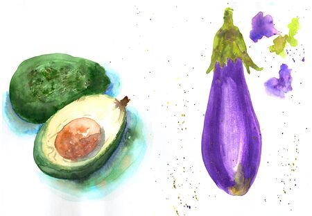 Watercolor hand drawn sketch illustration of avocado and eggplant on white background