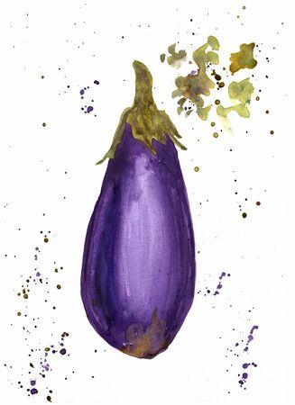 Watercolor hand drawn eggplant on white background. Reklamní fotografie