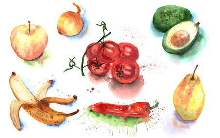 Watercolor hand drawn sketch illustration of fruits and vegetables on white background Reklamní fotografie