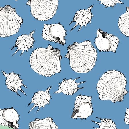 White and black sketch illustration of seashells on blue background. Seamless pattern. Isolated elements Imagens