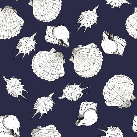 White and black sketch illustration of seashells on white color background. Seamless pattern