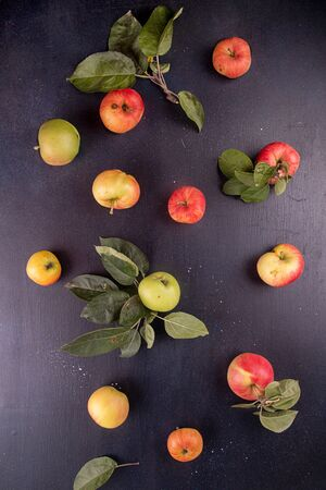 Organic natural apples on dark background. Flat lay. Top view Imagens