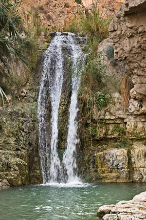 ein: Waterfall in Ein Gedi National park, Israel Stock Photo