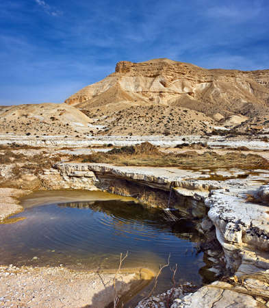 Spring and lake in Negev desert, Israel
