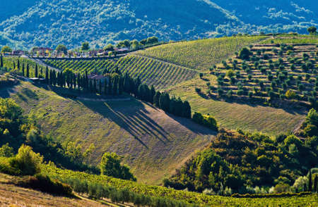 The Tuscan rural landscape, Tuscany, Italy