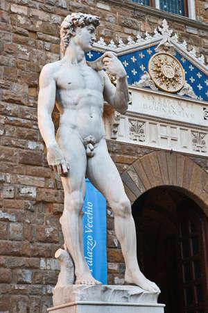 David statue next to the Palazzo Vecchio entrance, Piazza della Signoria, Florence, Tuscany, Italy Stock Photo - 8071381