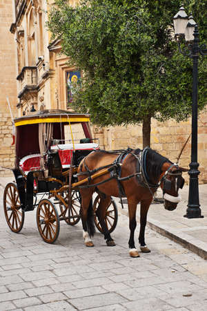 Tourist chariot in the Old City of Mdina, Malta