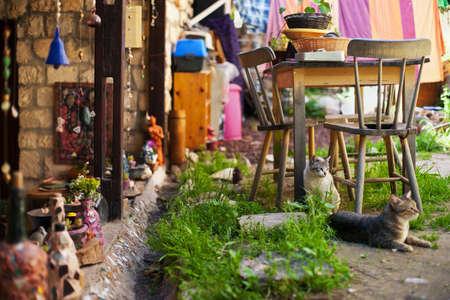 Country house yard, Rosh Pinna, Upper Galilee, Israel Stock Photo - 15982777