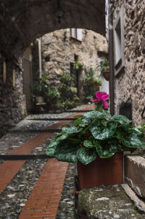 Streets in Dolceacqua is a scenic medieval town in the Province of Imperia, Liguria, Italy Stock Photo