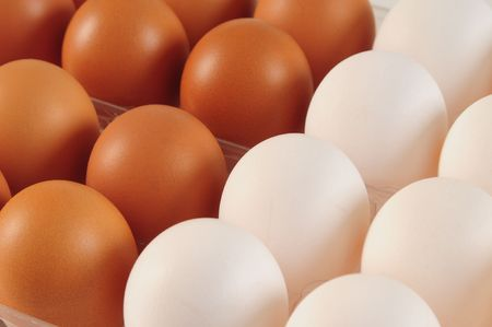 Eggs. Competition concept. Stock Photo - 4310316