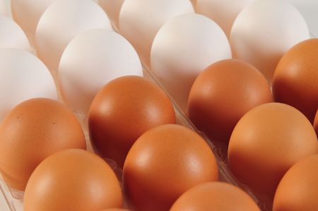 Eggs. Competition concept. Stock Photo - 4310364