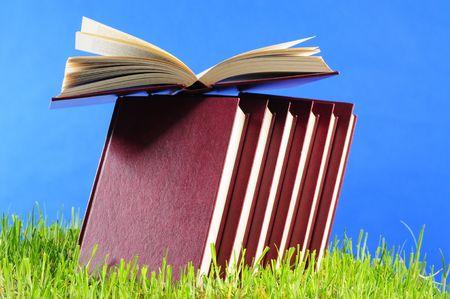 onderwijs: Boeken op gras. Stockfoto