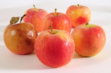 rotten fruit: Good and bad apple.