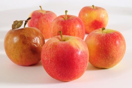 comida rica: Manzana buena y mala.  Foto de archivo