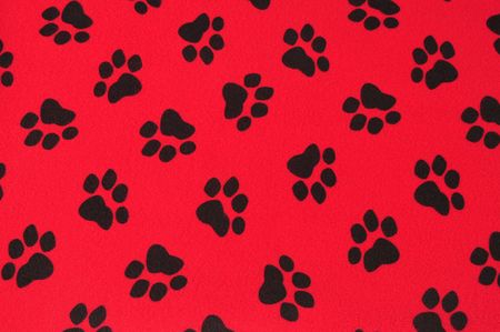 Paw print. Stock Photo - 7615336