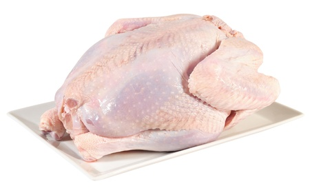 carcass meat: Raw turkey. Isolated