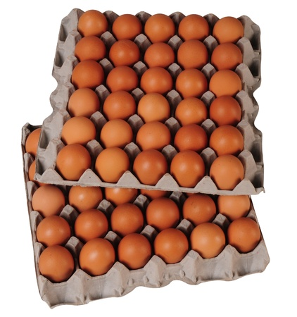 overlapped: Egg packaging  Isolated