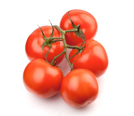Branch of fresh tomatoes. Isolated on white background Stock Photo - 8169611