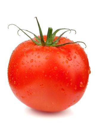 물 방울과 신선한 빨간 토마토입니다. 흰 배경에 고립