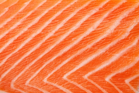 fresh salmon: Fresh red salmon texture. Closeup