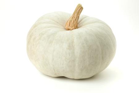 White pumpkin. Isolated on white background Stock Photo - 8393462