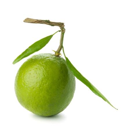Frische Limette mit grünen Blätter. Isolated on white