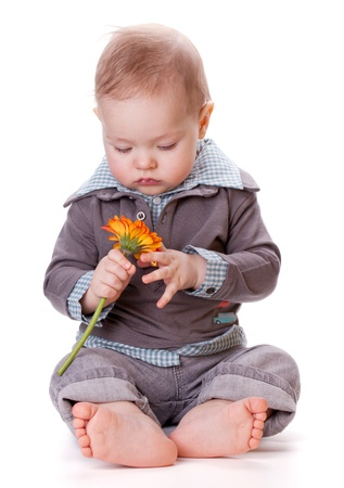 Small baby and orange flower. Isolated on white Stock Photo - 8801676
