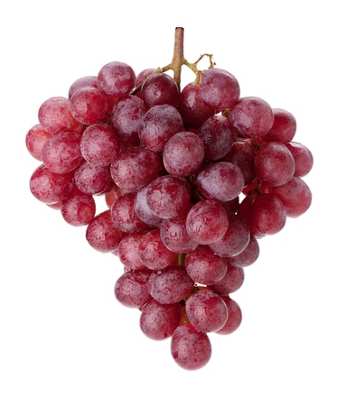 Fresh red grapes branch with water drops. Isolated on white background photo
