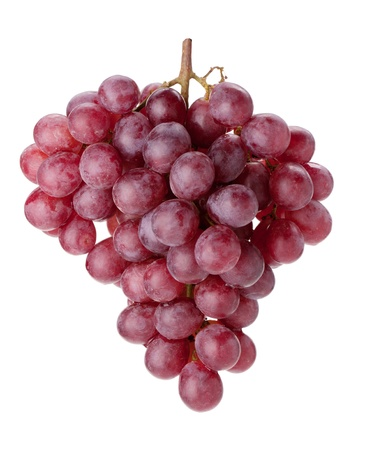 Fresh red grapes branch. Isolated on white background photo