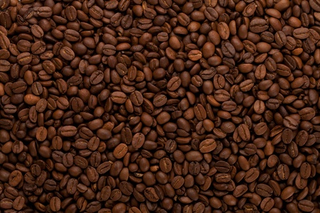 coffee crop: Coffee beans closeup background
