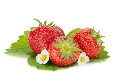 Three strawberry fruits with flowers and green leaves. Isolated on white background