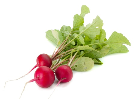 Fresh radish. Isolated on white background Stock Photo - 9960755