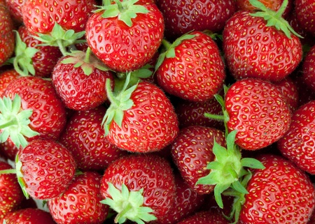 strawberry plant: Fresh ripe strawberry closeup