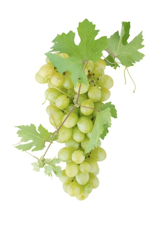 grapevine: White grapes with leaves. Isolated on white background Stock Photo