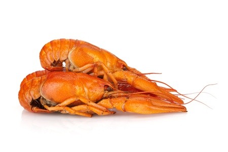 Three boiled crayfishes  Isolated on a white background Stock Photo - 14893835